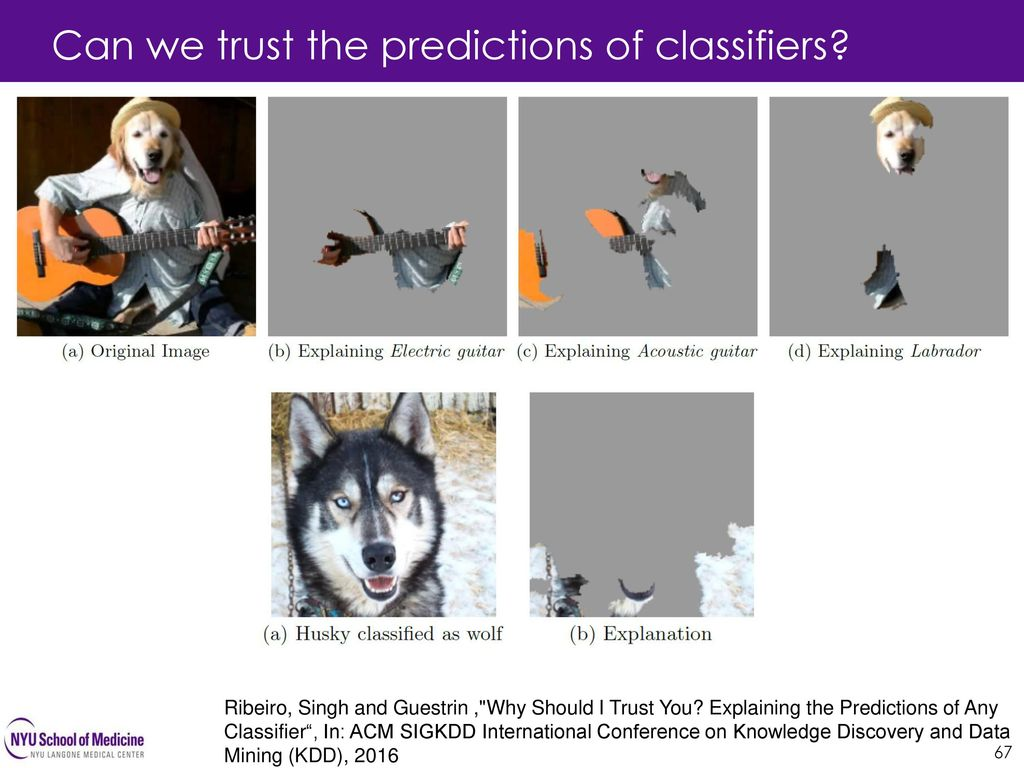 Can we trust the predictions of classifiers