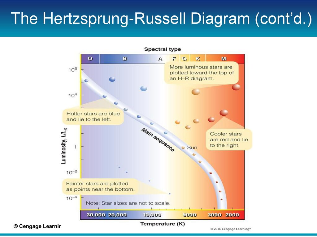 Chapter 9 the family of stars ppt download the hertzsprung russell diagram contd pooptronica