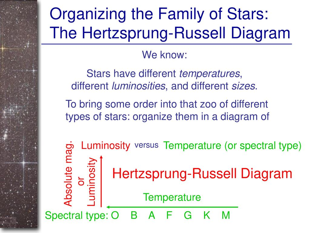 The family of stars ppt download organizing the family of stars the hertzsprung russell diagram pooptronica