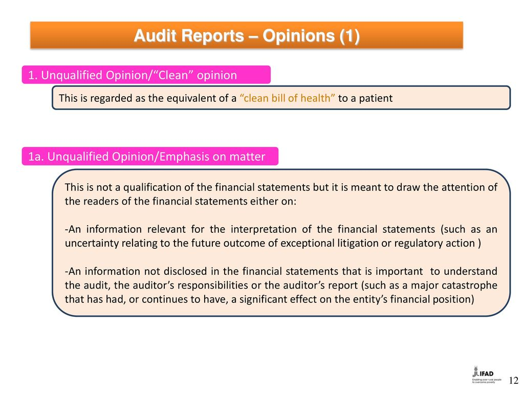 types of audit opinions pdf