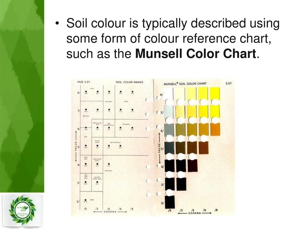 Munsell soil color chart download gallery free any chart examples double wear color chart image collections free any chart examples soil color charts images chart example nvjuhfo Gallery