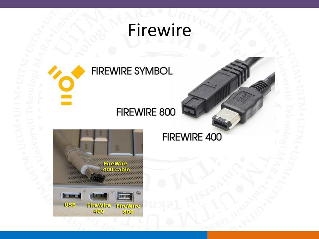 Magnificent Firewire 400 Vs 800 Pictures Inspiration - Electrical ...