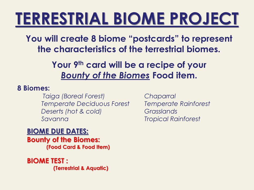 worksheet Terrestrial Biomes Worksheet chapter ppt download 7 terrestrial biome project