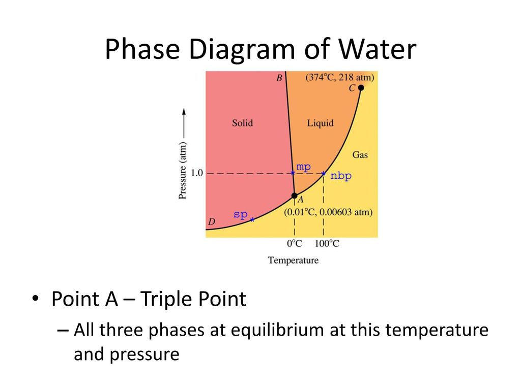 States of matter and energy ppt download phase diagram of water point a triple point pooptronica