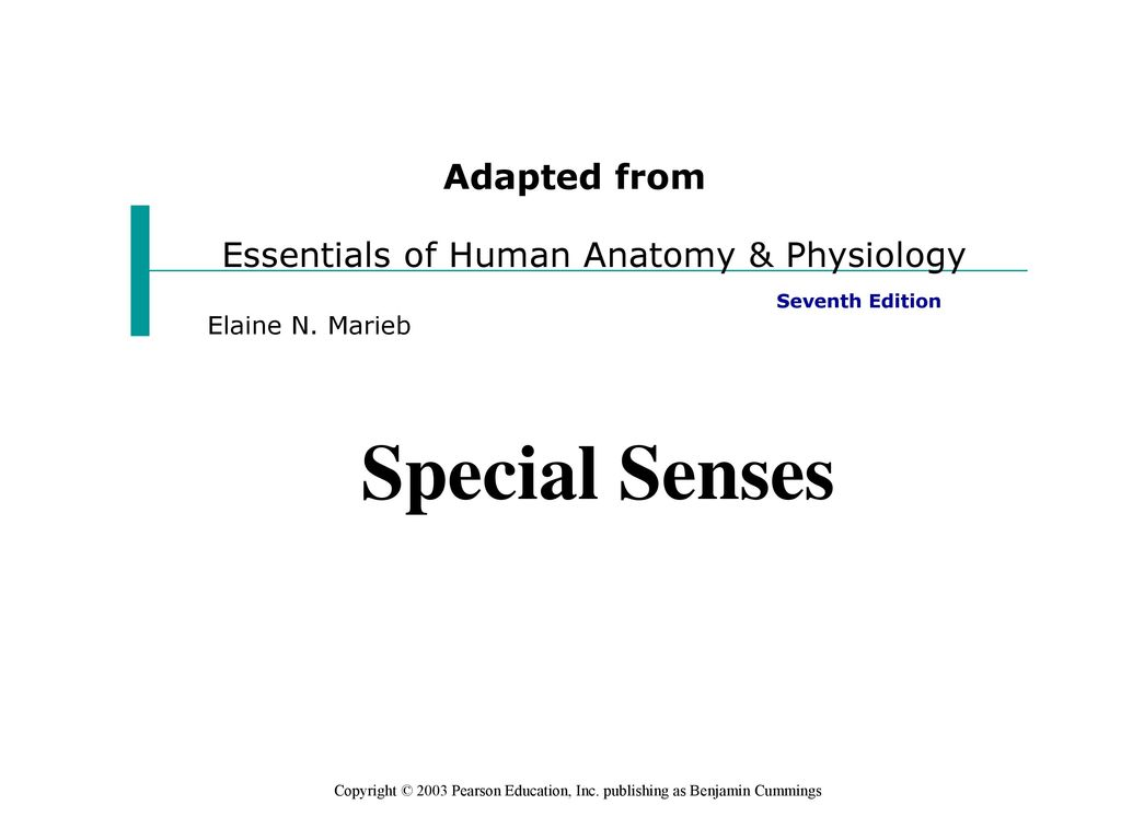 Ausgezeichnet Anatomy And Physiology Special Senses Powerpoint ...