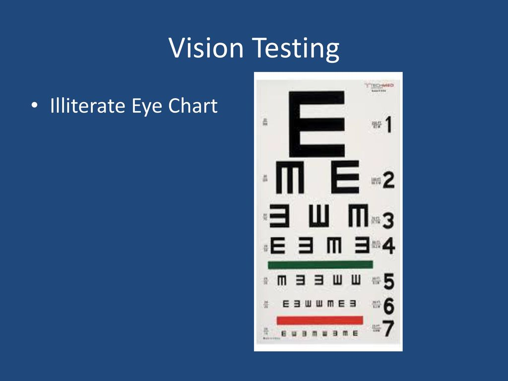 Special senses ppt download 32 vision testing illiterate eye chart geenschuldenfo Choice Image