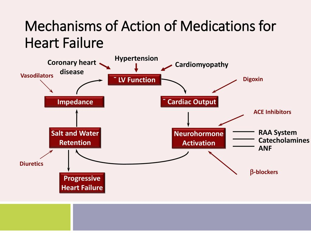 digoxin mechanism of action pdf