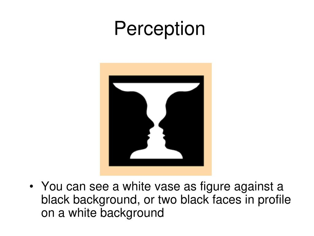 Sensation perception ppt download perception you can see a white vase as figure against a black background or two reviewsmspy