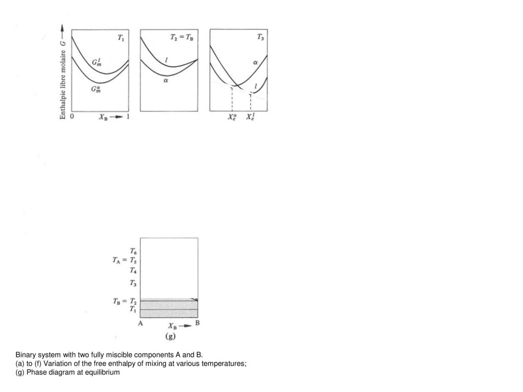 Alloys phase diagrams ppt download binary systems the relative quantity of the two phases is determined by the lever rule pooptronica