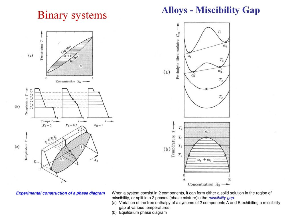 Alloys phase diagrams ppt download alloys miscibility gap experimental construction of a phase diagram pooptronica