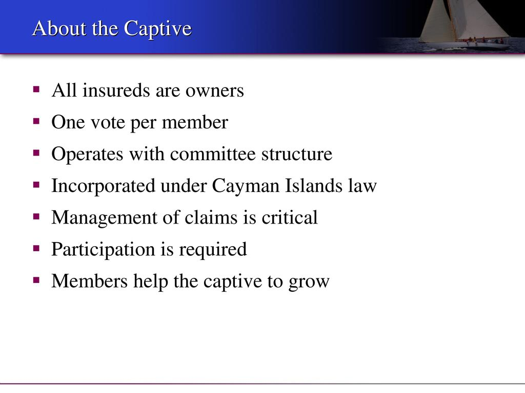 Cayman Islands Company Law Dividend