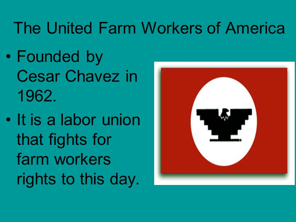 The United Farm Workers of America