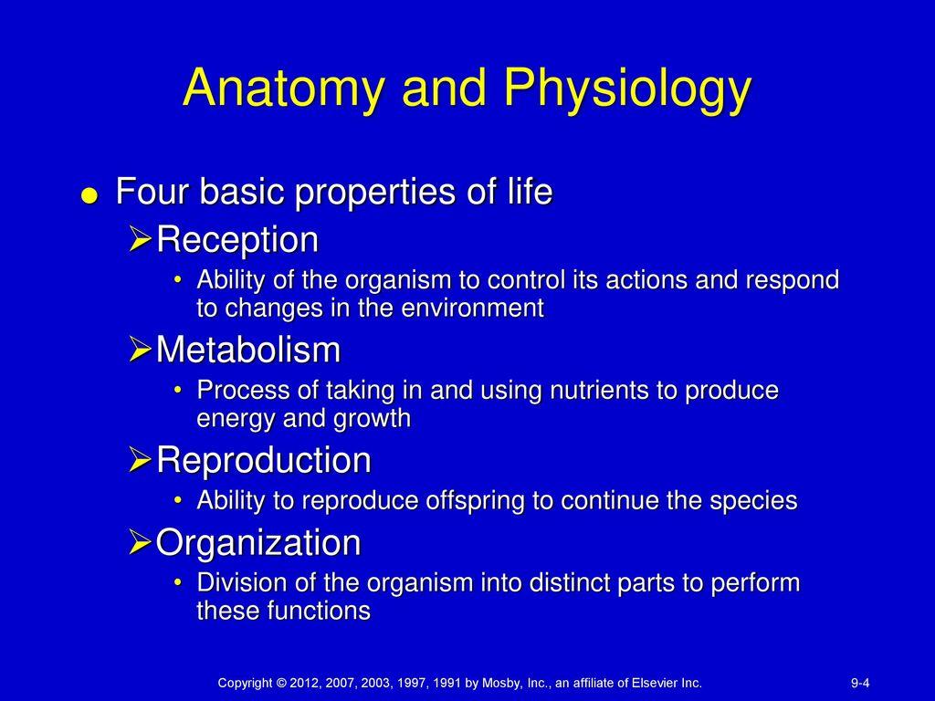 Beste Mosby Anatomy And Physiology Zeitgenössisch - Menschliche ...