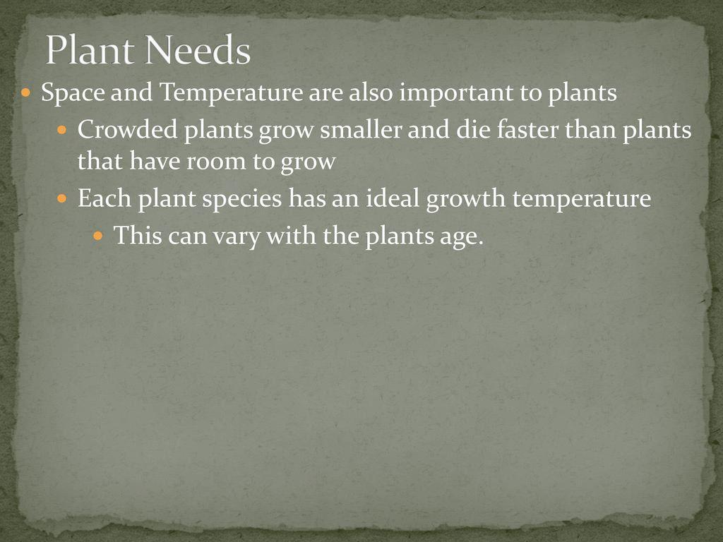 plants types and needs ppt download. Black Bedroom Furniture Sets. Home Design Ideas