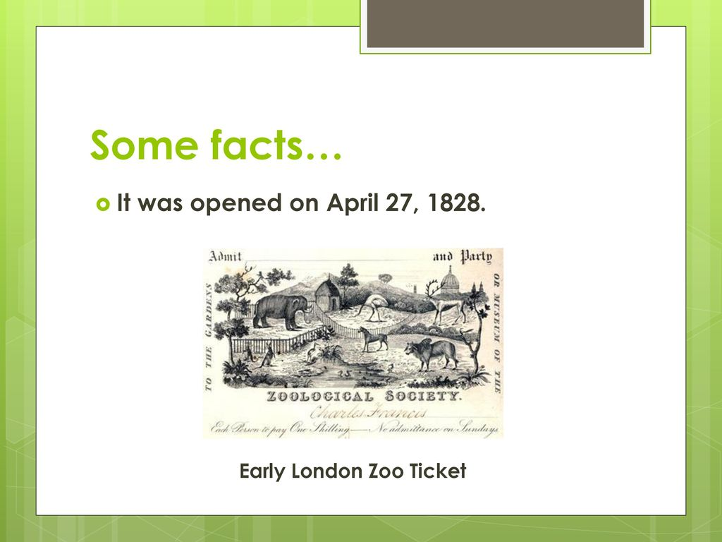 london zoo facts