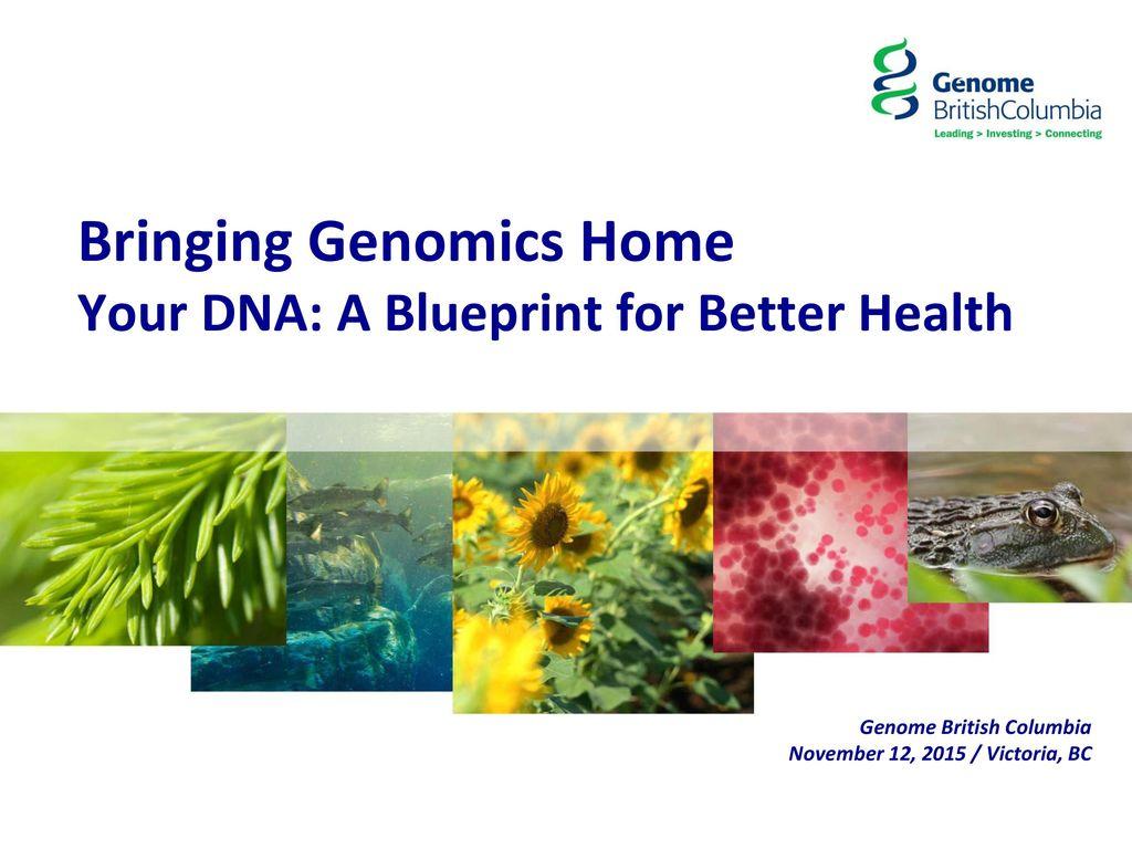 Bringing genomics home your dna a blueprint for better health ppt bringing genomics home your dna a blueprint for better health malvernweather Choice Image