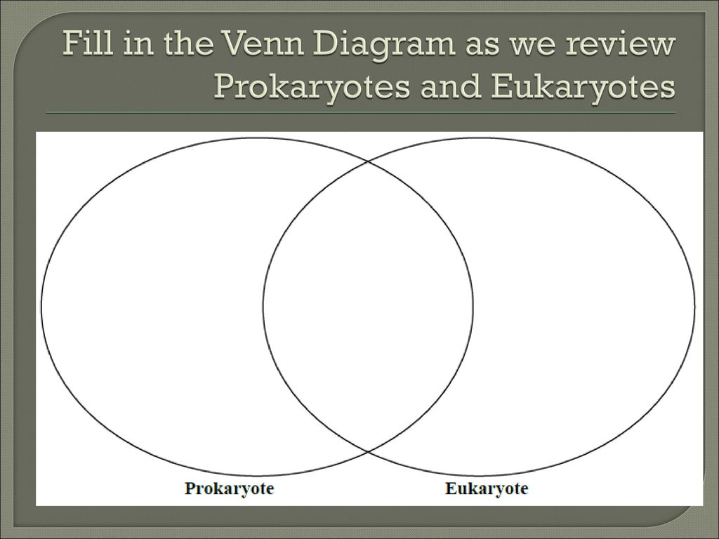 Eukaryotic And Prokaryotic Venn Diagram Logic Pictures Diagrams Choice Image Electric Copper Wire Geometric