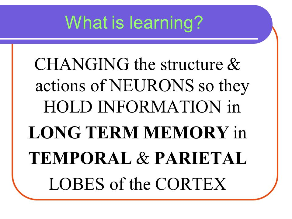 What is learning CHANGING the structure & actions of NEURONS so they HOLD INFORMATION in. LONG TERM MEMORY in.