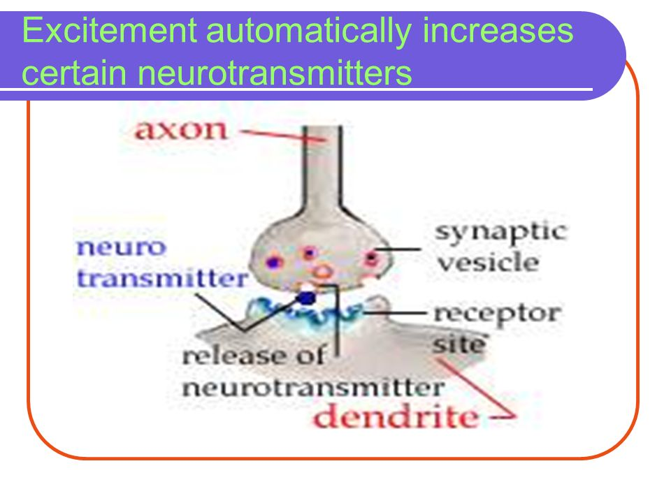 Excitement automatically increases certain neurotransmitters