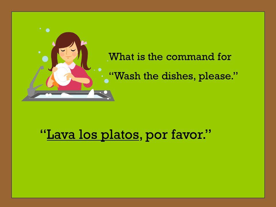 Lava los platos, por favor.