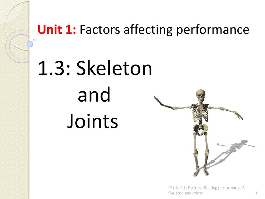 1.3: Skeleton and Joints Unit 1: Factors affecting performance - ppt ...