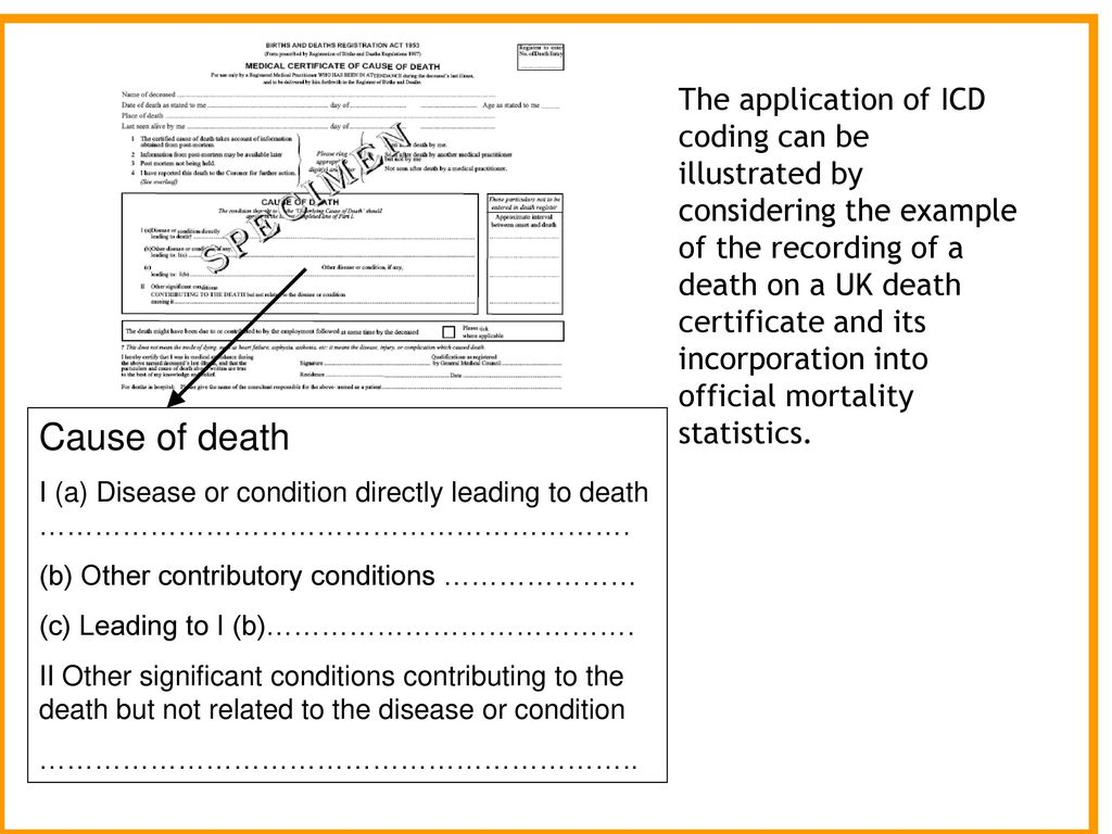 example of medical certificate