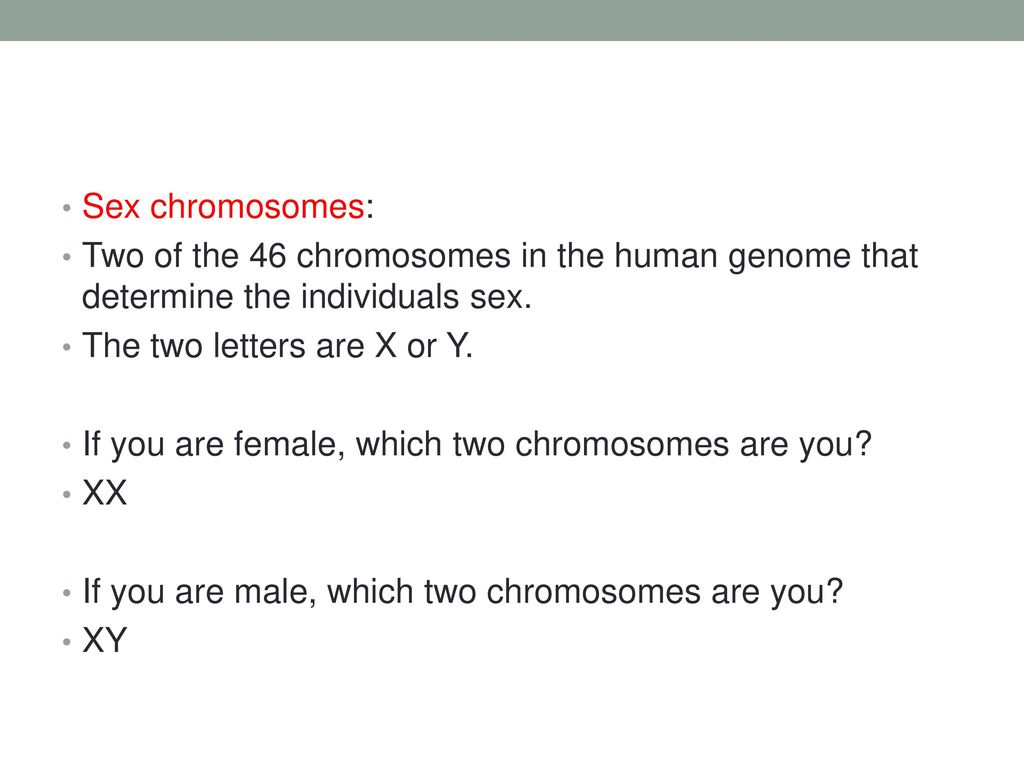 worksheet Section 14 2 Human Chromosomes Worksheet Answers chapter 14 human heredity ppt download sex chromosomes two of the 46 in genome that determine individuals