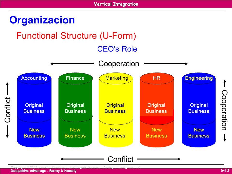 Organizacion Functional Structure (U-Form) CEO's Role Cooperation