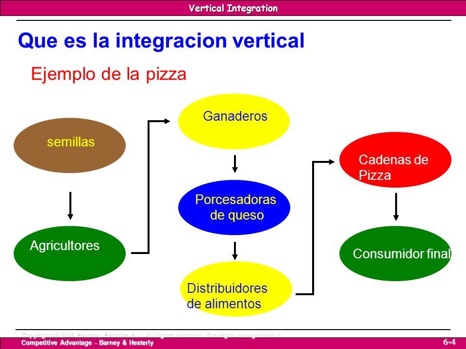 Que es la integracion vertical