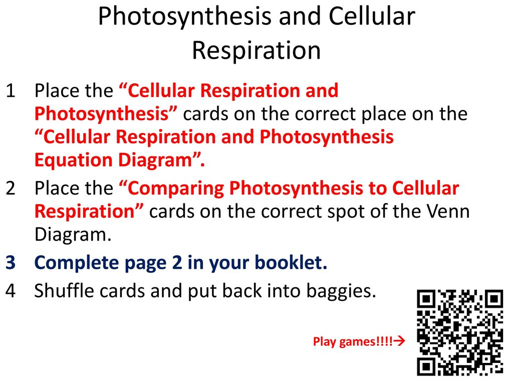 Venn diagram comparing photosynthesis and cellular respiration venn diagram comparing photosynthesis and cellular respiration nail kasey ccuart Image collections