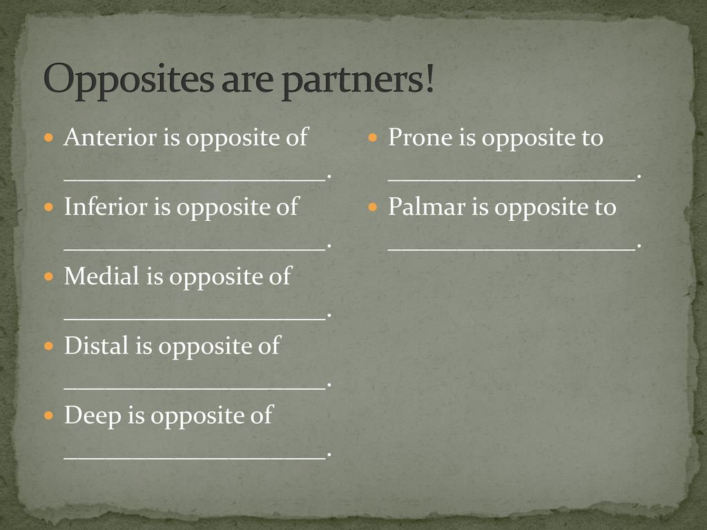 Opposites are partners!