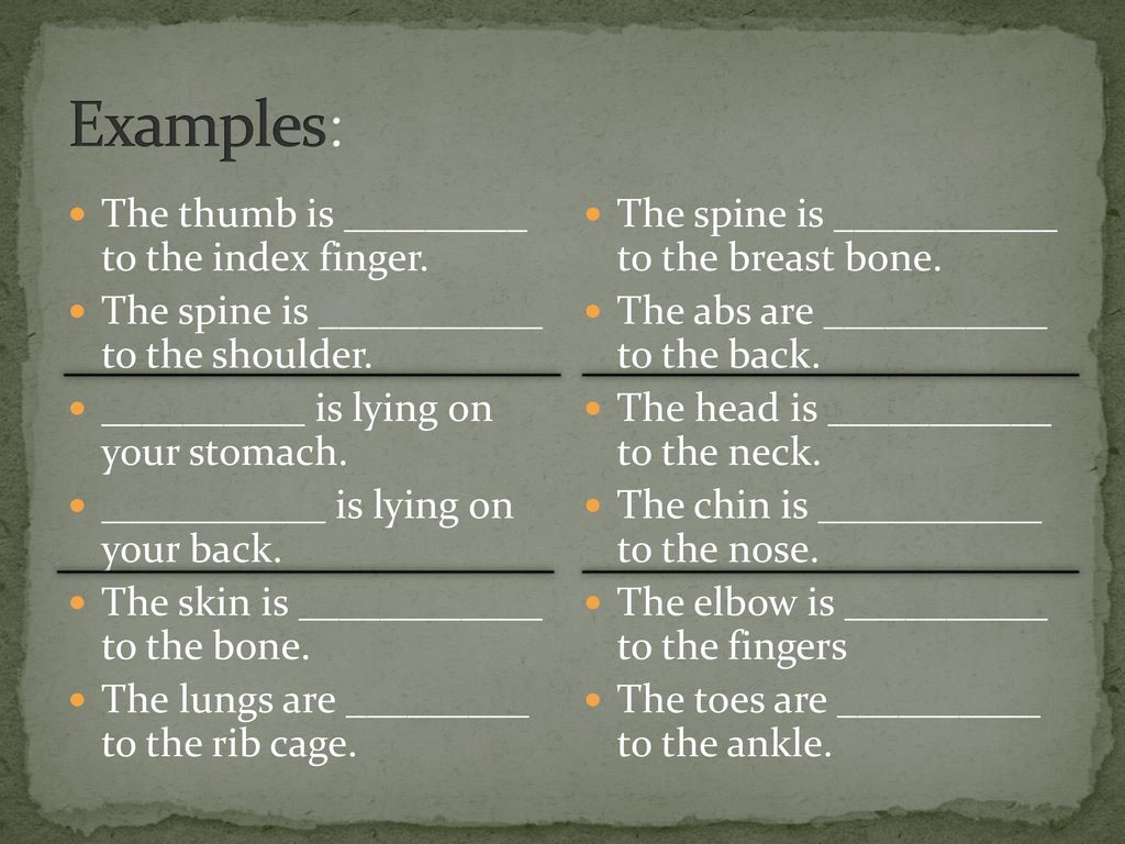 Examples: The thumb is _________ to the index finger.