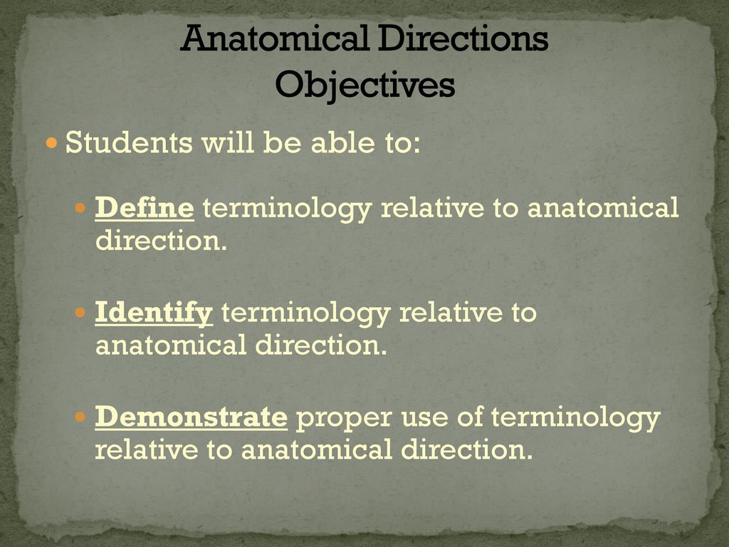 Anatomical Directions Objectives