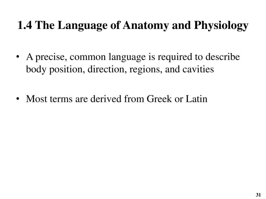 Attractive The Language Of Anatomy Elaboration - Physiology Of Human ...