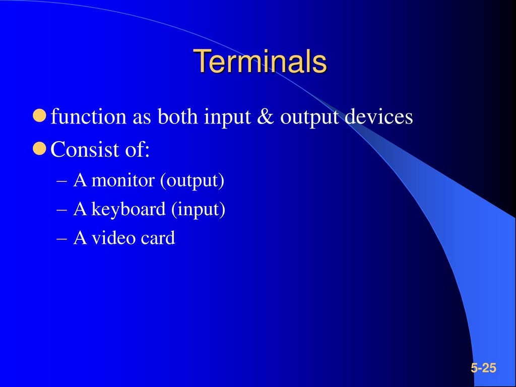 Terminals function as both input & output devices Consist of: