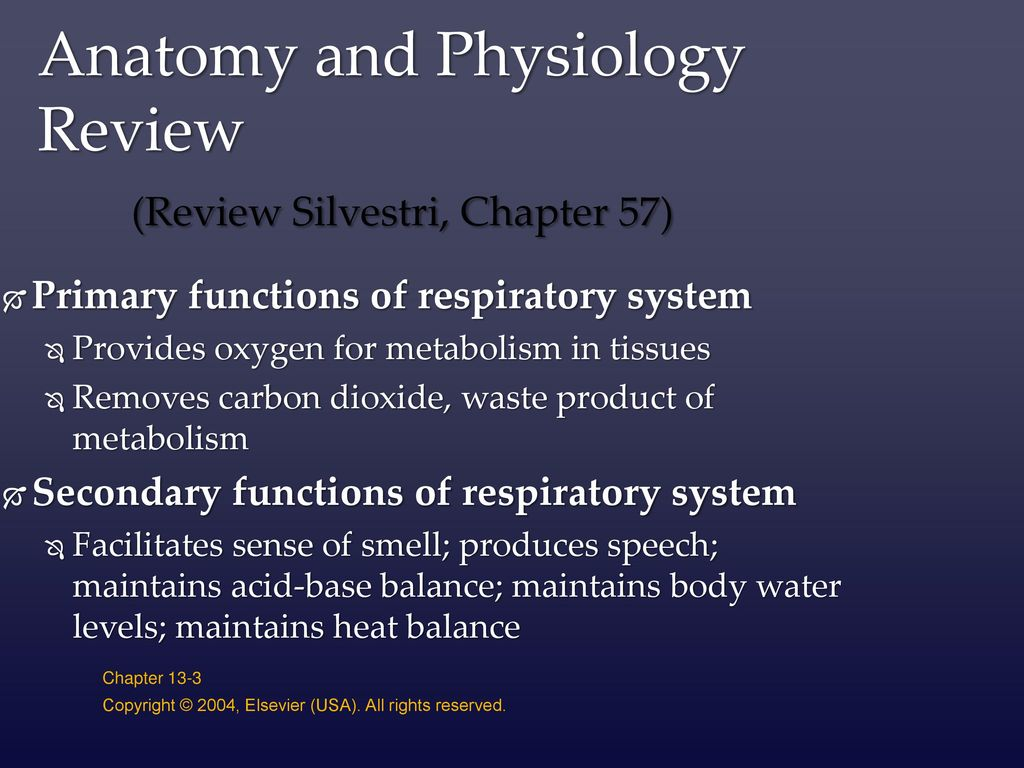 Objectives Review anatomy and physiology of the respiratory system ...