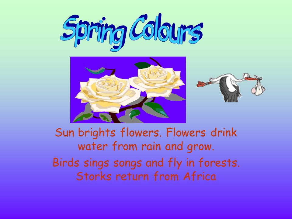 Spring Colours Sun brights flowers. Flowers drink water from rain and grow.