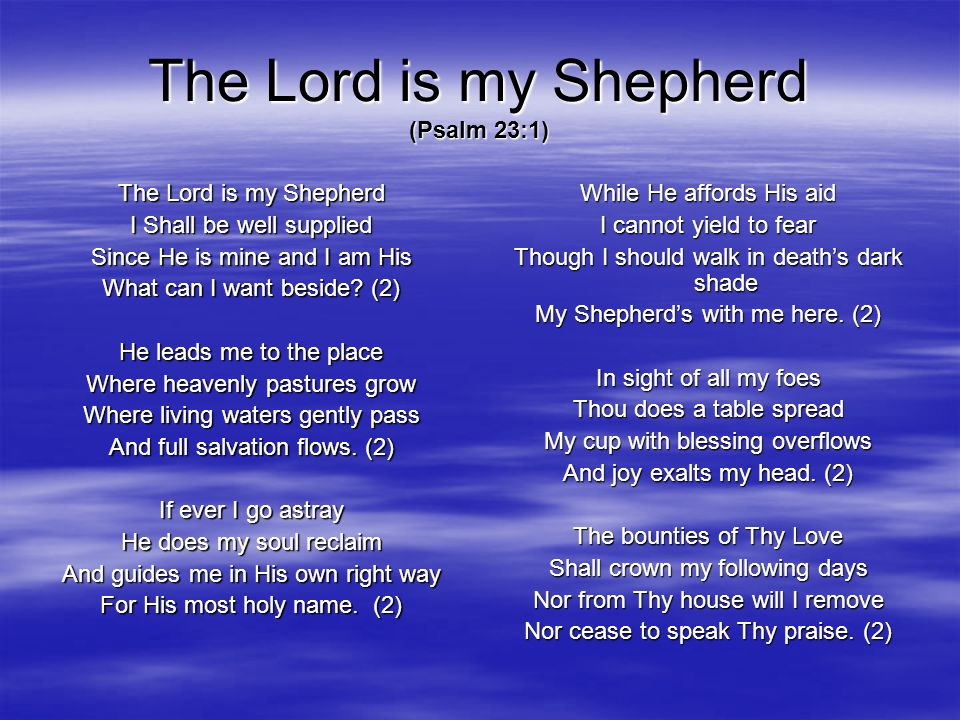 The Lord is my Shepherd (Psalm 23:1)