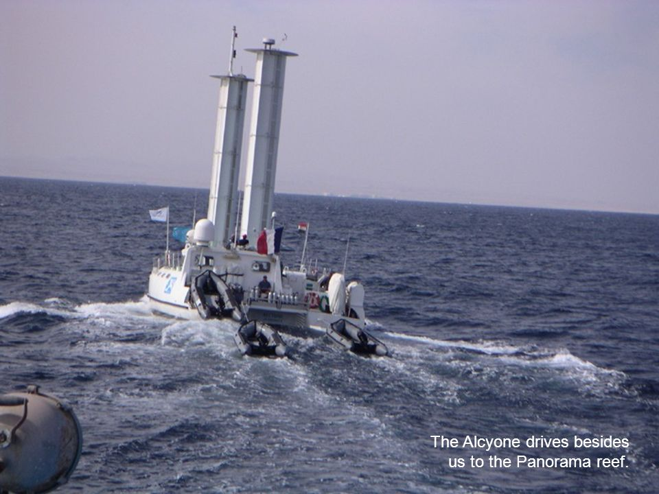 The Alcyone drives besides us to the Panorama reef.