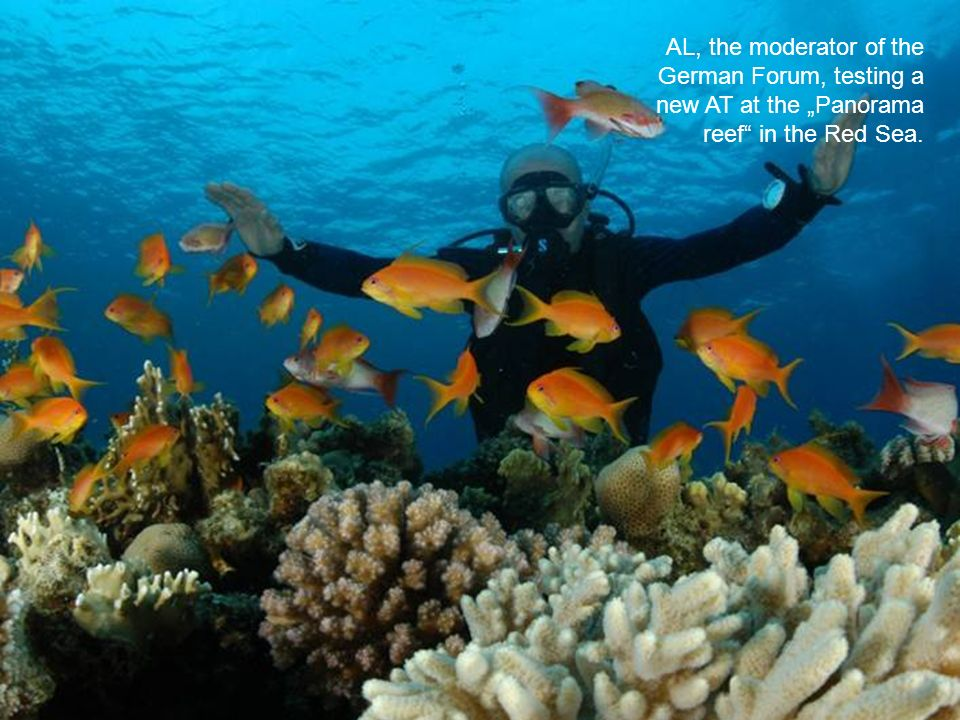 "AL, the moderator of the German Forum, testing a new AT at the ""Panorama reef in the Red Sea."