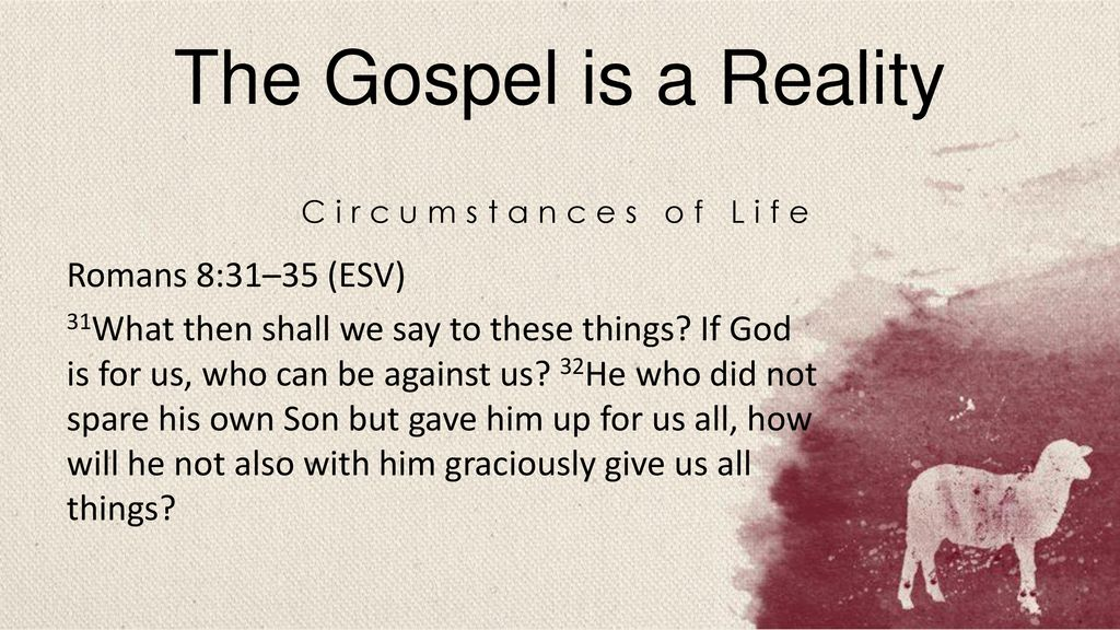 The Gospel is a Reality Romans 8:31–35 (ESV)