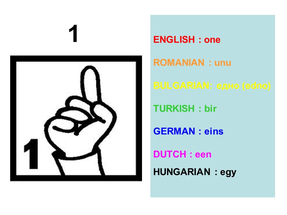 ENGLISH : one ROMANIAN : unu BULGARIAN: eдно (edno) TURKISH : bir
