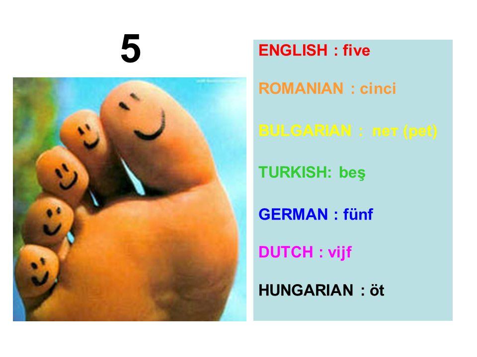 5 ENGLISH : five ROMANIAN : cinci BULGARIAN : пет (pet) TURKISH: beş