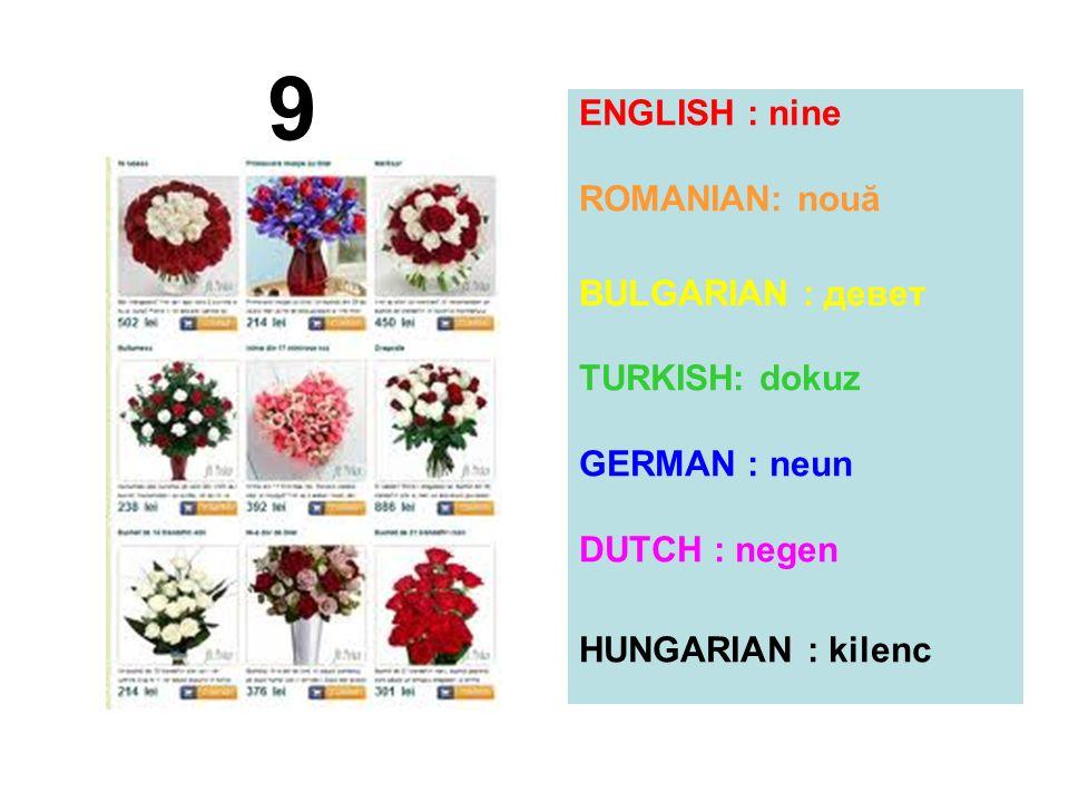 9 ENGLISH : nine ROMANIAN: nouă BULGARIAN : девет TURKISH: dokuz