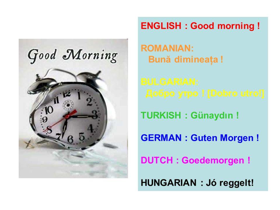 ENGLISH : Good morning . ROMANIAN: Bună dimineaţa .