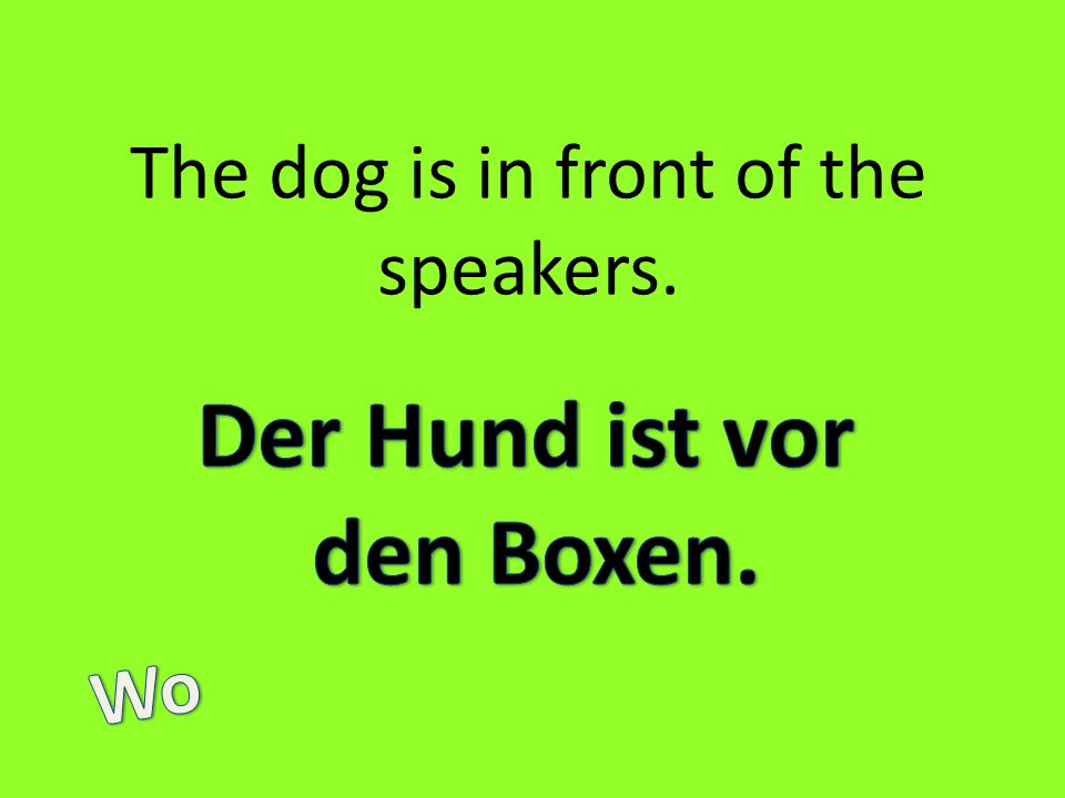 The dog is in front of the speakers.