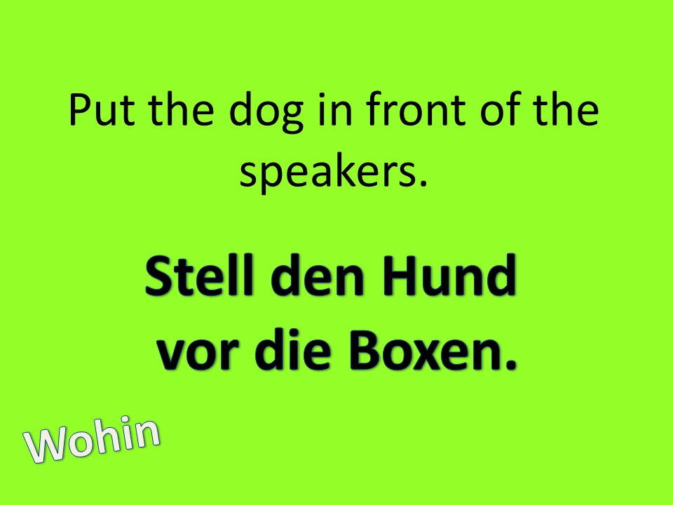 Put the dog in front of the speakers.