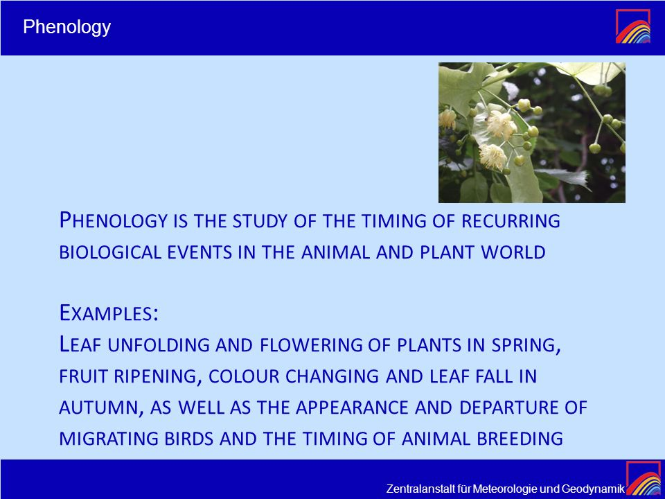 Phenology Phenology is the study of the timing of recurring biological events in the animal and plant world.