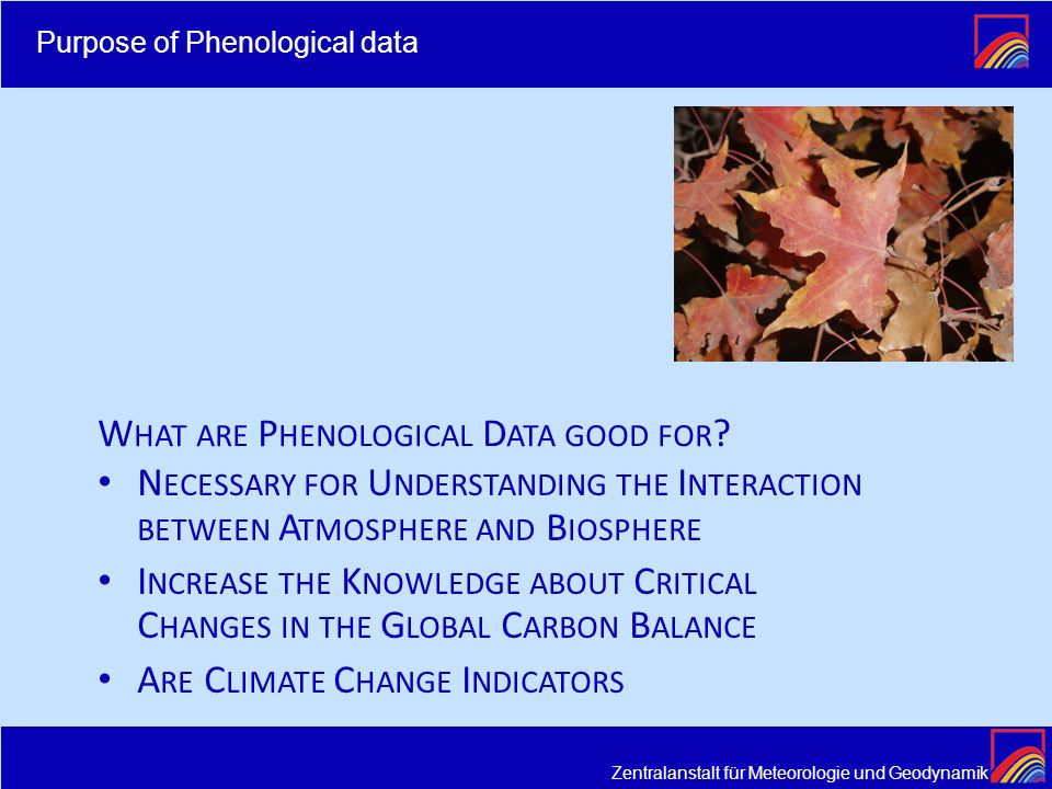Are Climate Change Indicators What are Phenological Data good for