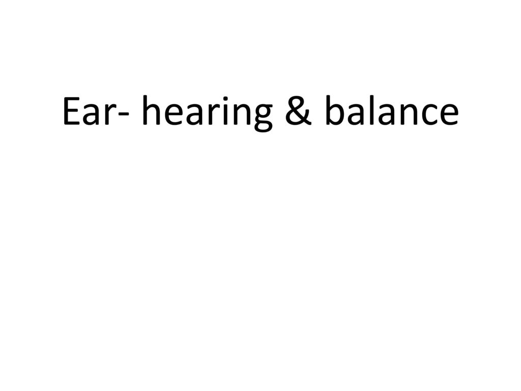 worksheet The Ear Hearing And Balance Worksheet senses ppt download 32 ear hearing balance